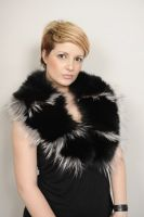COLLAR_SKIN_FOX_BLACK_SILVER_FOX_TRIM_CODE_0036