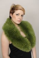 COLLAR_SKIN_FOX_LIGHT_GREEN_CODE_00166_