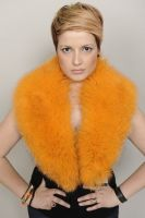 COLLAR_SKIN_FOX_ORANGE_CODE_00569_
