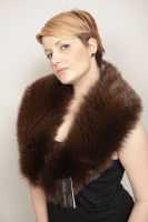 COLLAR_SKIN_FOX__BROWN_CODE_0049_
